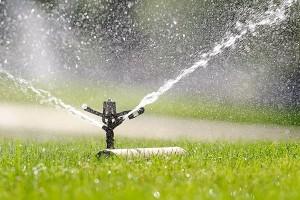 BascHill_sprinklers12_9826